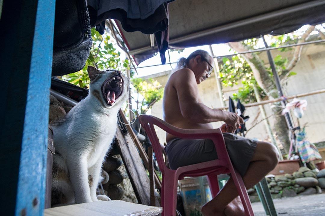 柔柔(貓)陪著牠主人(夏曼·藍波安)在門口閱讀。攝: 王文彥 /端傳媒