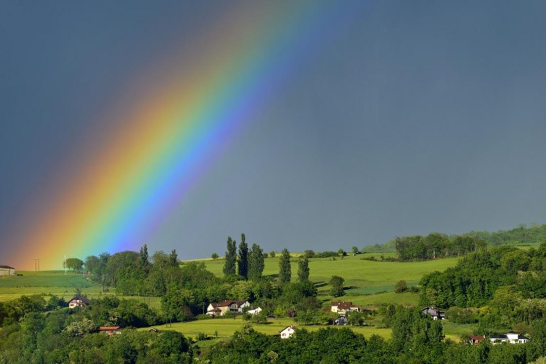 鳳飛飛的歌聲,氣息綿長,熱情奔放,充滿能量,帶給人的,是慰藉和希望,所有這一切,都可以用彩虹作為象徵攝:JEAN-PHILIPPE DELOBELLE / BIOSPHOTO / AFP