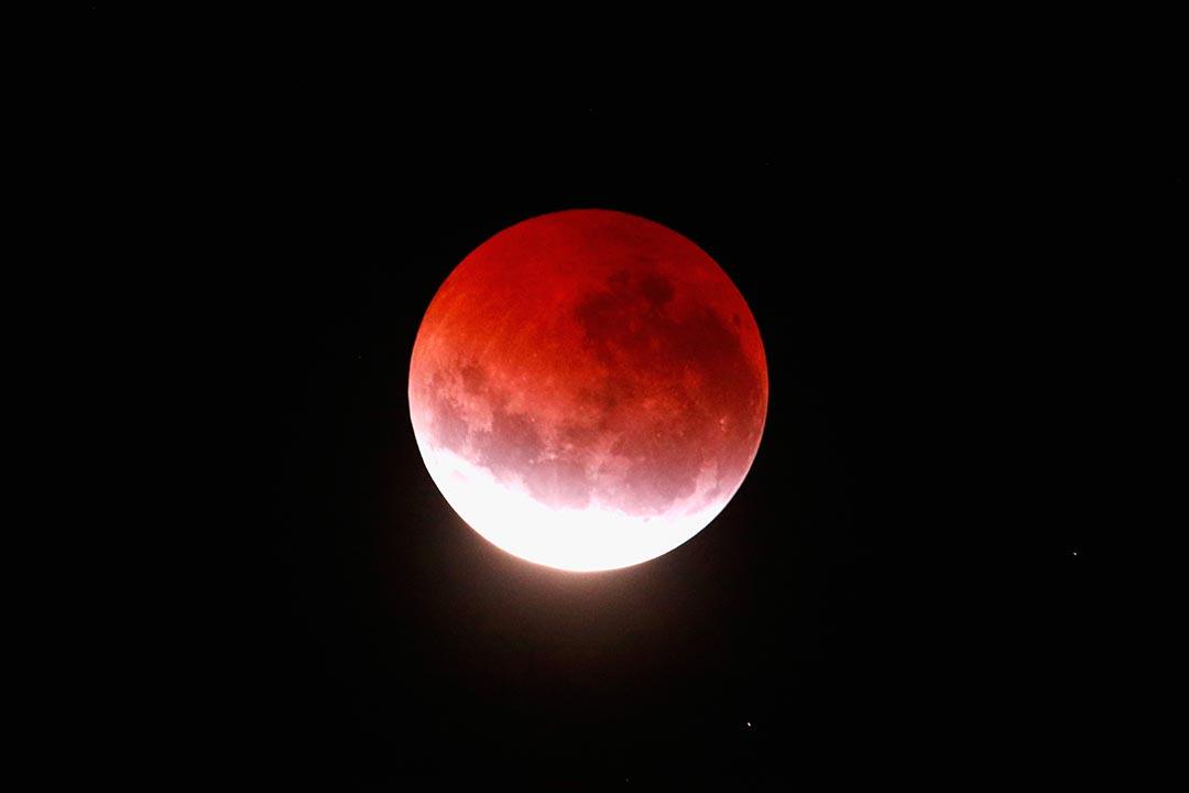 2015年4月4日,在新西蘭上空亮起紅色月亮。攝:Phil Walter/Getty Images