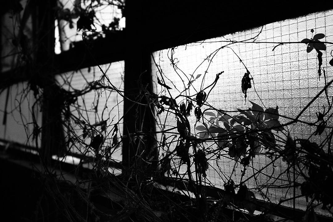 香港的廢墟。攝:樊素心/端傳媒