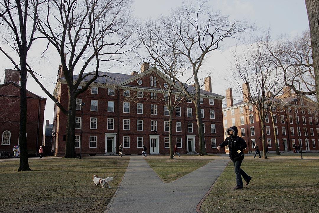 哈佛大學校園。攝: Joe Raedle/Getty Images