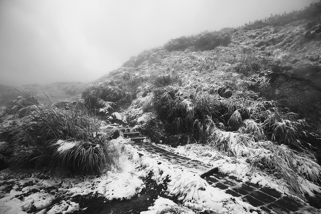 2016年1月24日,台灣陽明山。攝:張國耀/端傳媒