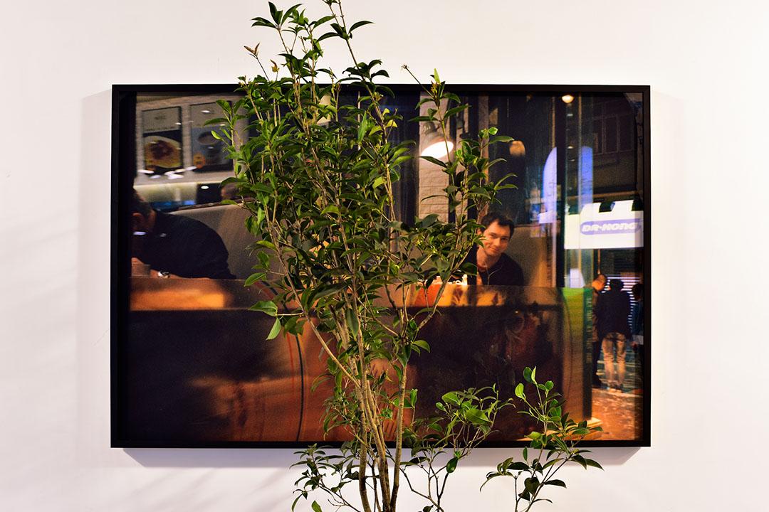 《遊園:不太容易做綠色》個人展覽作品之一《The enigma》。圖片由藝術家提供