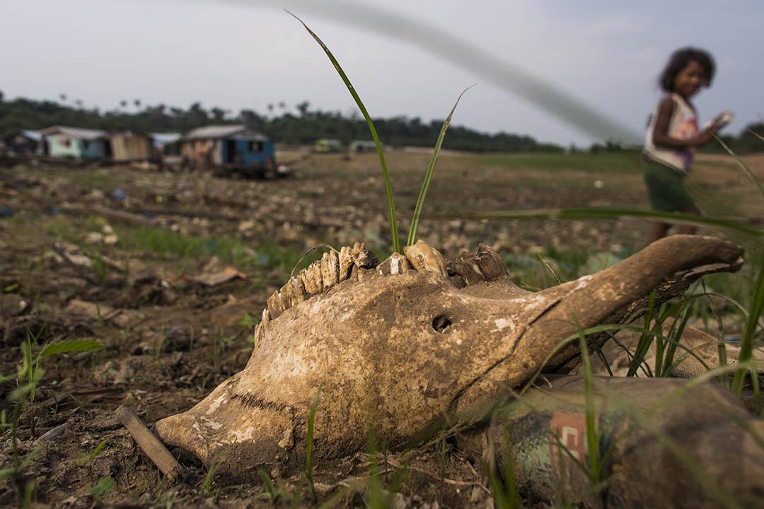 世界銀行(World Bank)11月8日發出警告,如果不儘快管控氣候變化問題,2030年前全球可能增加1億赤貧人口。攝:Raphael Alves/AFP