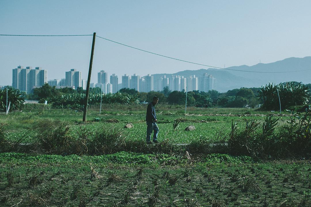 由船塢結業,告別海岸,直到農場被毀,名符其實的滄海桑田。攝 : 王嘉豪/端傳媒