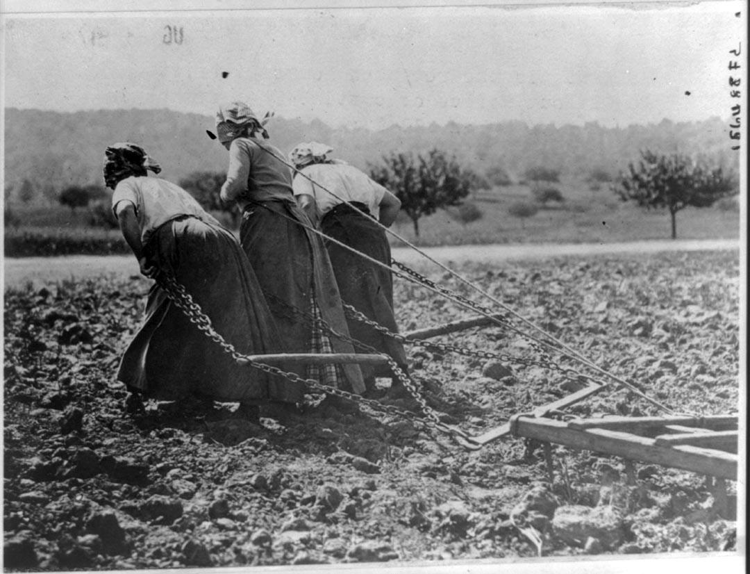 1916至17年間,三位女農民在田間工作。攝:Library of Congress/Handout via Reuters