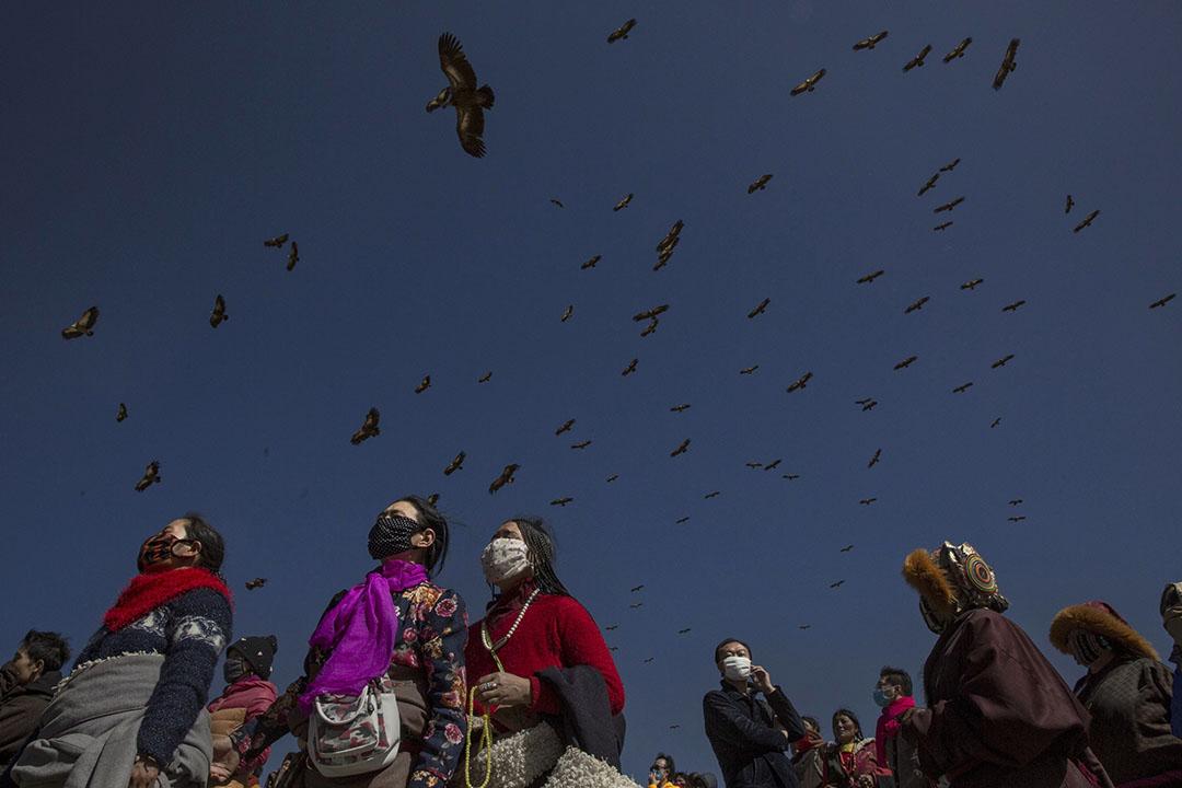 禿鷹在佛學院的人潮上空飛過。攝:Kevin Frayer/Getty Images