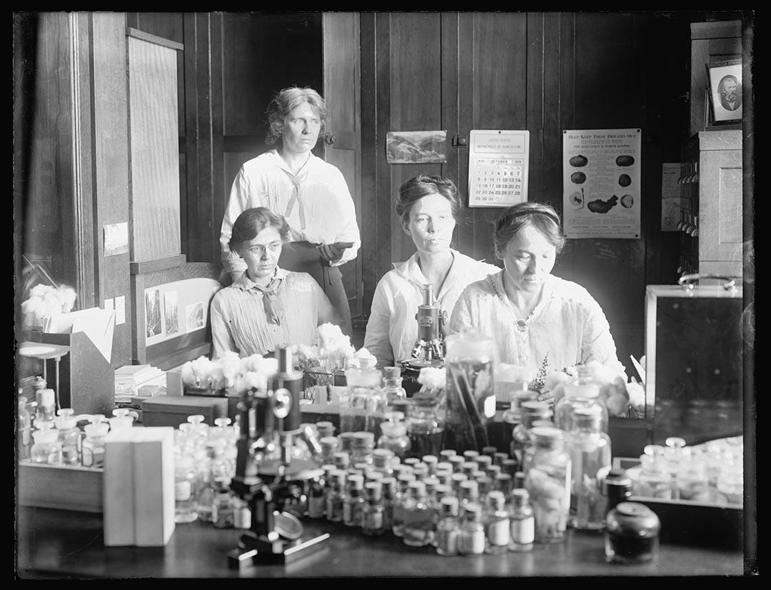 1910至20年間,四位女性科學家在實驗室內作有關寄生蟲的生物實驗。攝: National Photo Company Collection/Library of Congress/Handout via Reuters