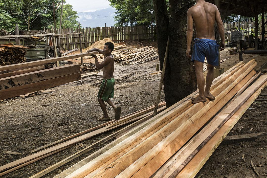 U Win Bo經營的木廠,工人把切割好的木材放上卡車。攝: Minzayar/端傳媒