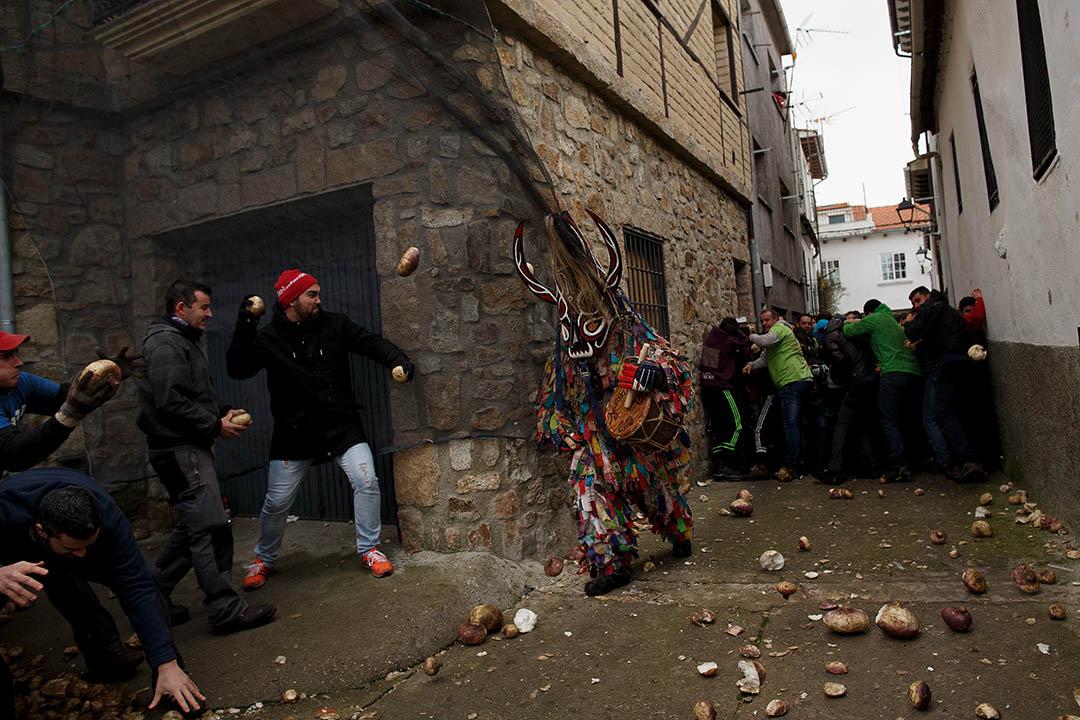 2016年1月20日,西班牙西南部皮安拉爾鎮舉行「蘿蔔狂歡節」(Jarramplas),居民和遊客在街上互相拋鬥擲大頭菜。攝:Pablo Blazquez Dominguez/Getty