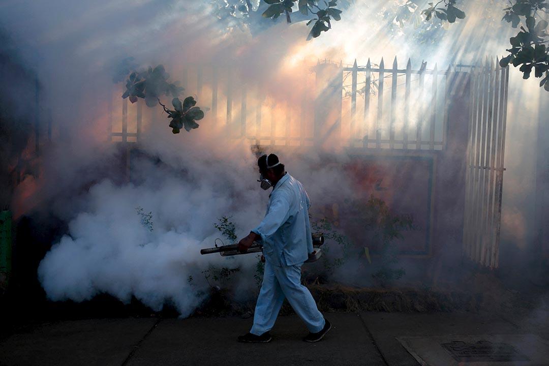 2016年1月26日,尼加拉瓜首都馬拿瓜,衛生部門人員噴灑滅蚊劑殺滅傳播寨卡病毒及登革熱的蚊子。攝:Oswaldo Rivas/REUTERS