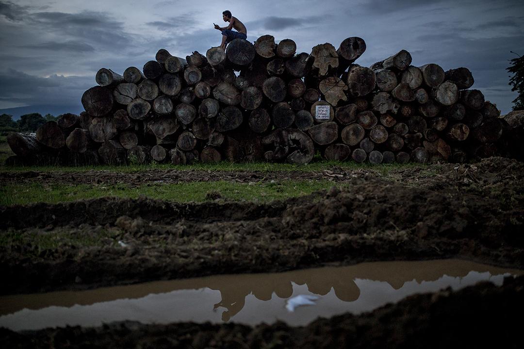 一名工人坐在已切割好的木材上。攝: Minzayar/端傳媒