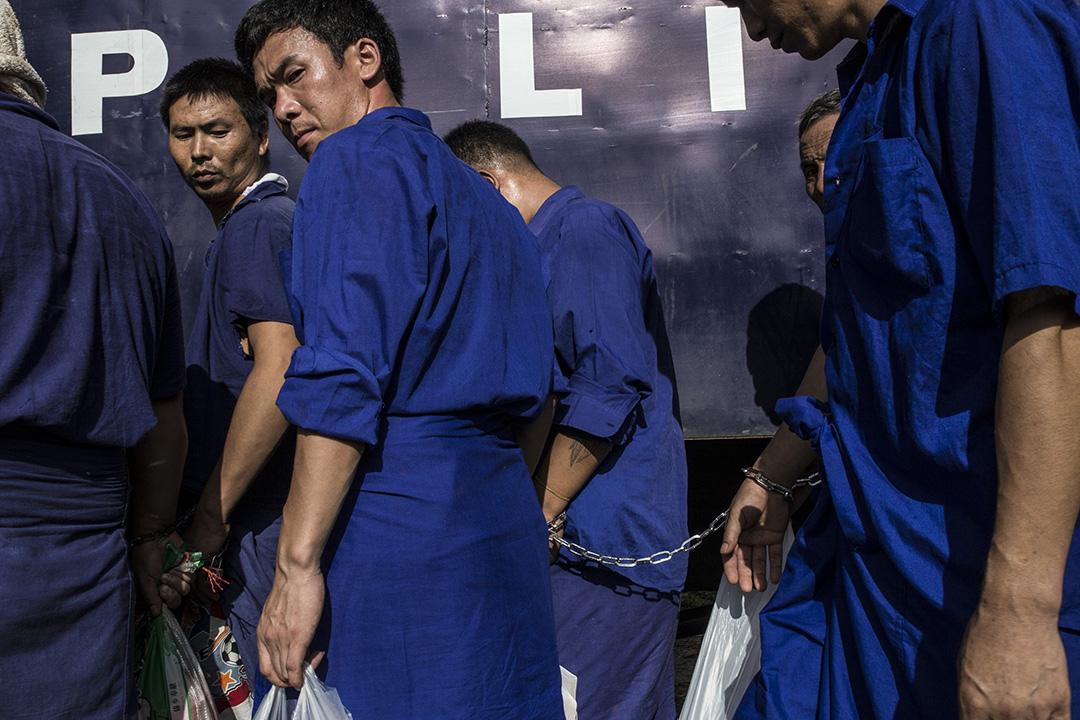 155名伐木工因非法伐木被捕。攝: Minzayar/端傳媒