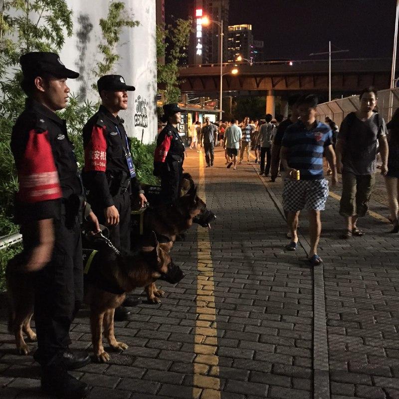 深圳市公安與警犬在場外守侯。