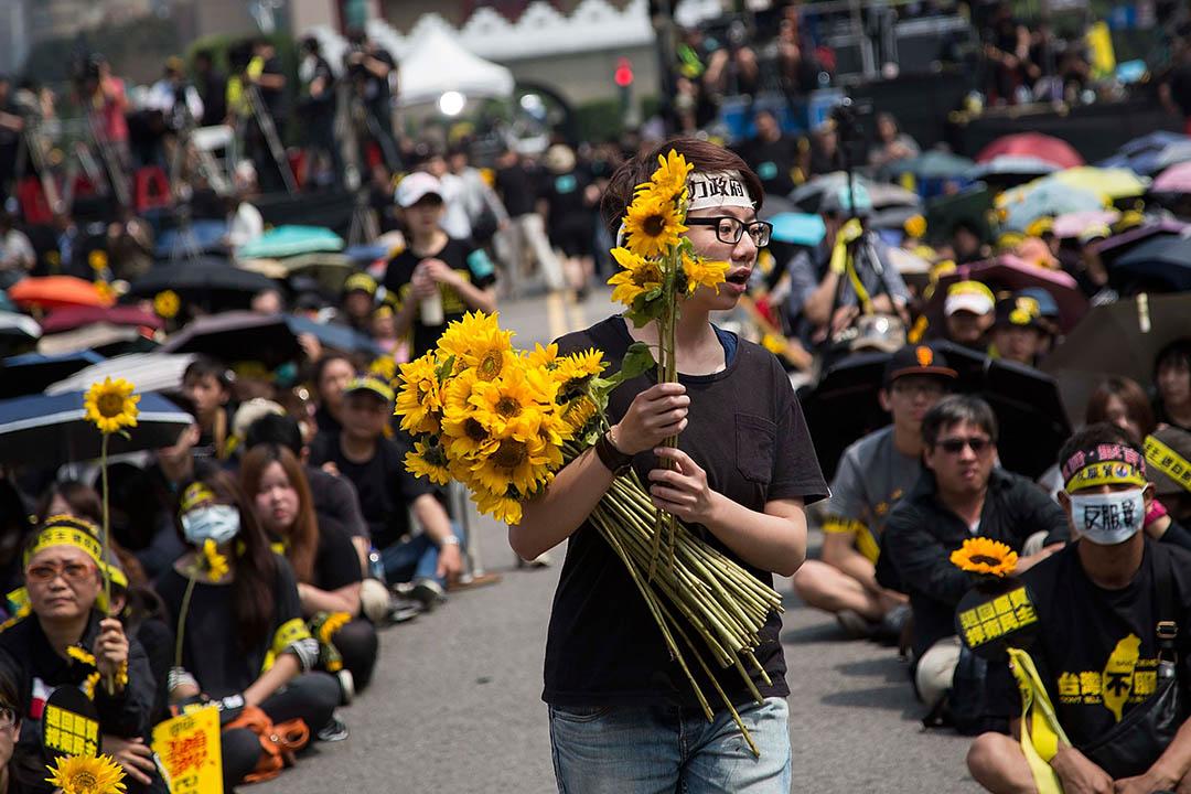 2014年3月30日,台北,逾萬人在凱達格蘭大道參與反服貿遊行,多名與會者帶同太陽花參加集會。攝:Lam Yik Fei/GETTY