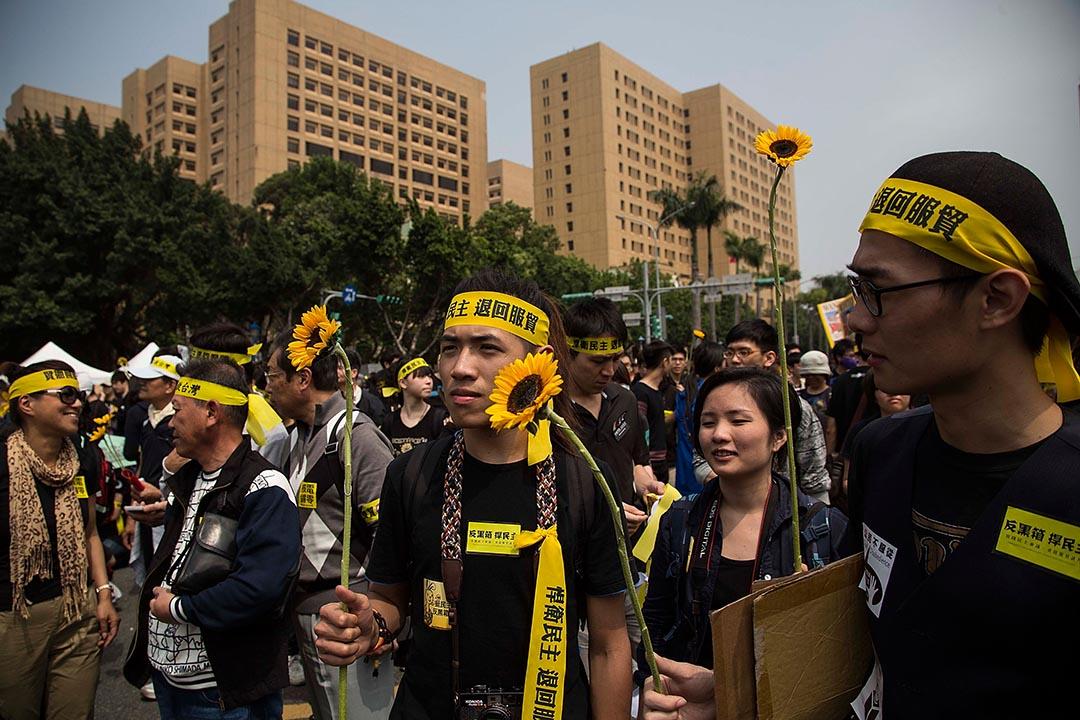 2014年3月30日,台北,逾萬人參與反服貿集會,會上有參加者手持太陽花。攝:Lam Yik Fei/GETTY