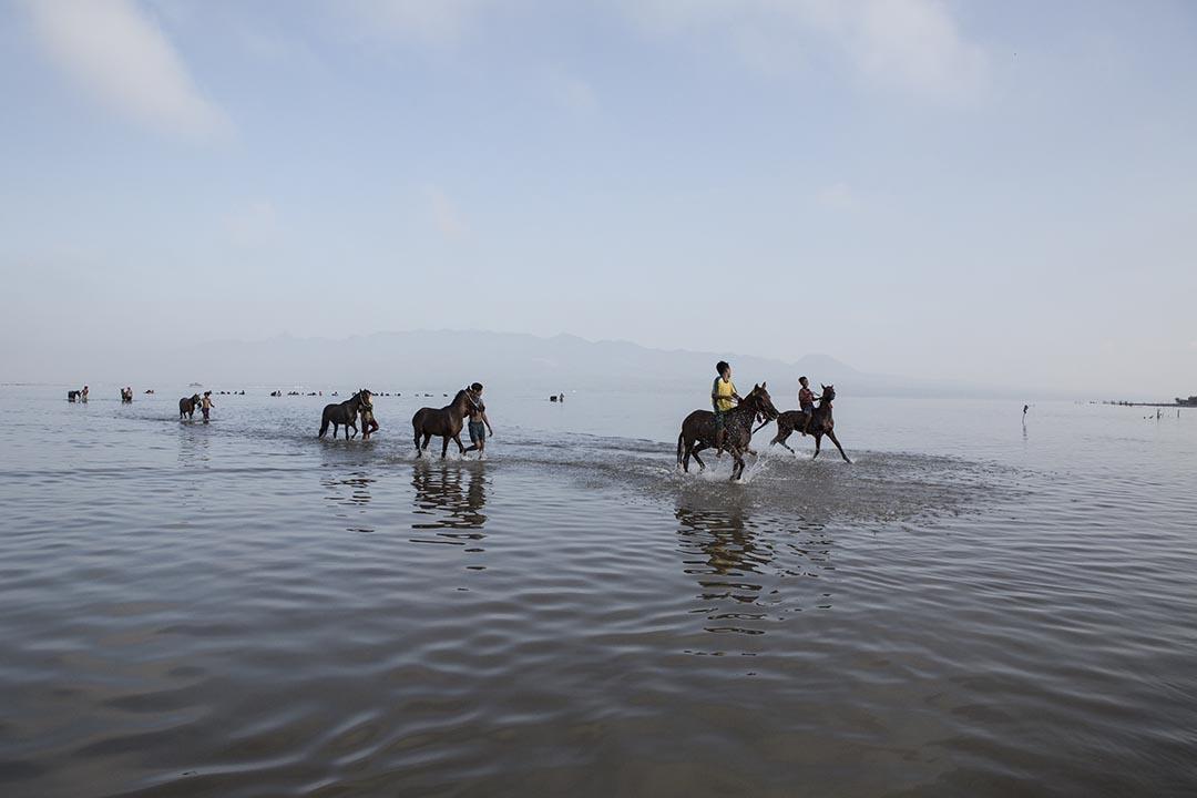 小騎師們帶馬兒到海灘。攝:Putu Sayoga
