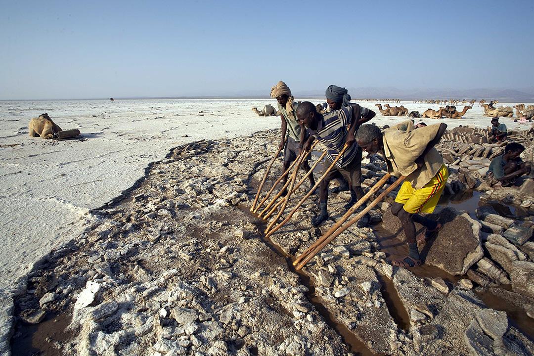 2007年1月29日,埃塞俄比亞,工人在火山附近的低地收集鹽塊。攝:Michel Toulouse / Reuters