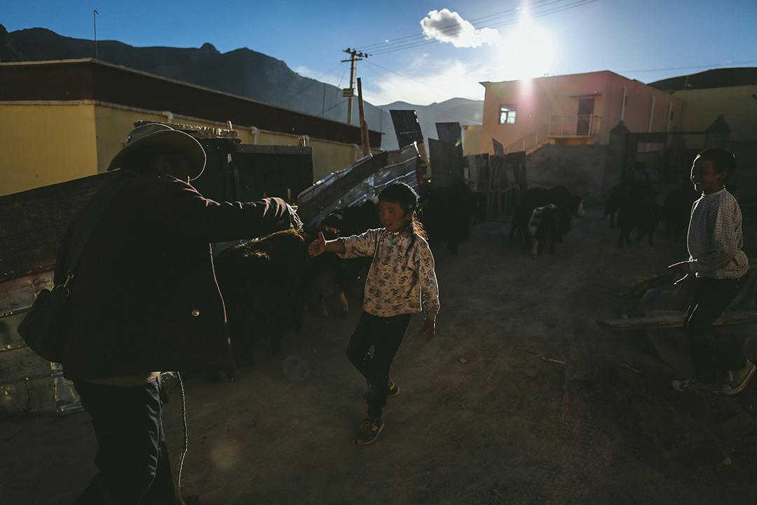 牧民放牧後回到結古鎮附近一個移民村。攝 : 王嘉豪/端傳媒