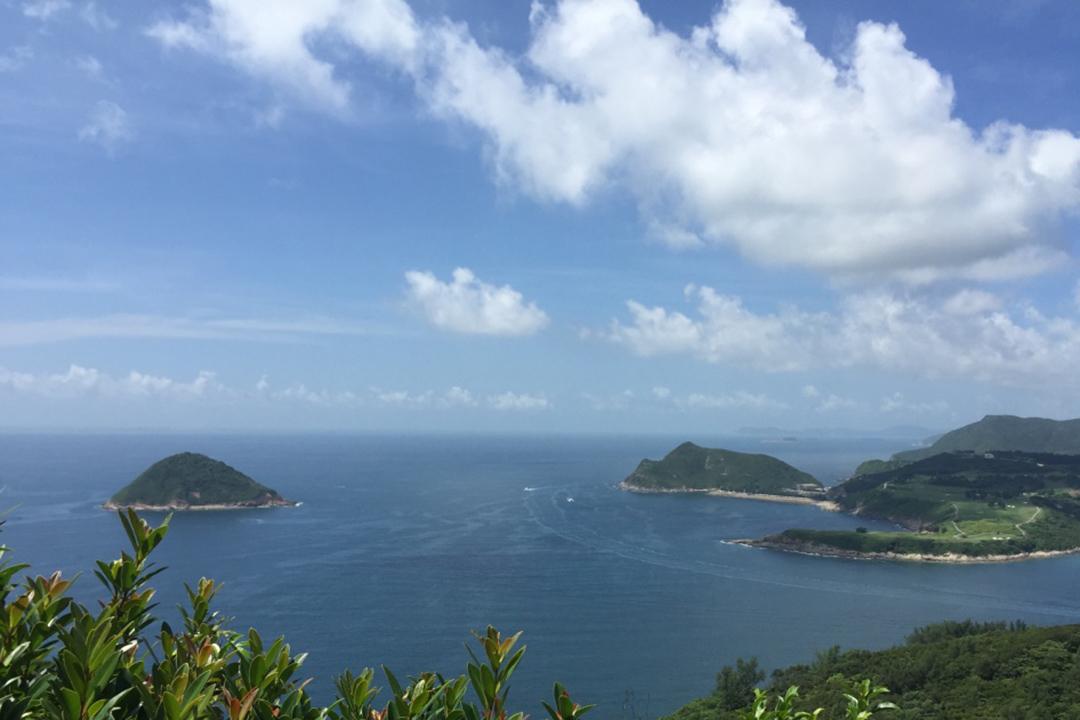 香港清水灣郊野公園。攝:樊素心/端傳媒