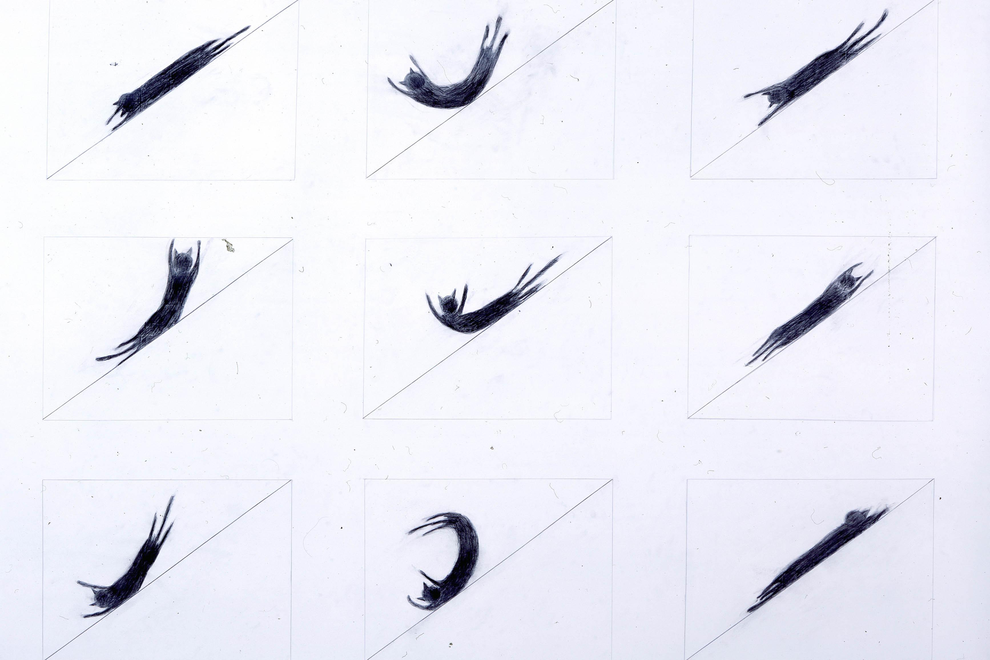 落合多武作品《Drawing For Cat Slide》(圖片由香港藝術中心提供)