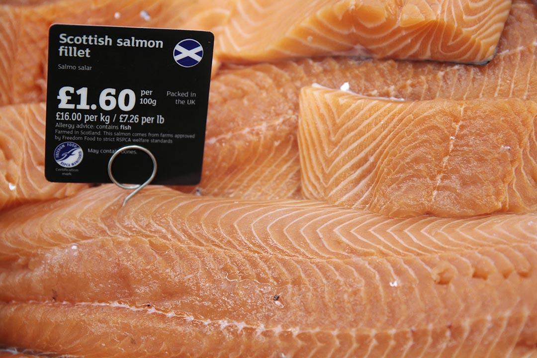 美國食品藥品管理局批准一種轉基因三文魚可食用引發爭議。圖為一家超市售賣的三文魚。攝 : Suzanne Plunkett/REUTERS