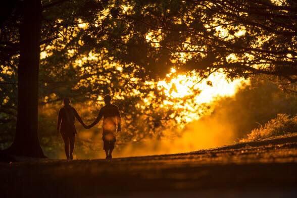 圖為英國倫敦一對情侶在烈治文公園漫步。攝:Justin Setterfield/GETTY