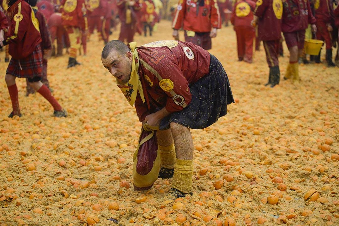 在意大利,一個男人在傳統的橘子大戰中收集橘子。攝:Luca Bruno/AP Photo