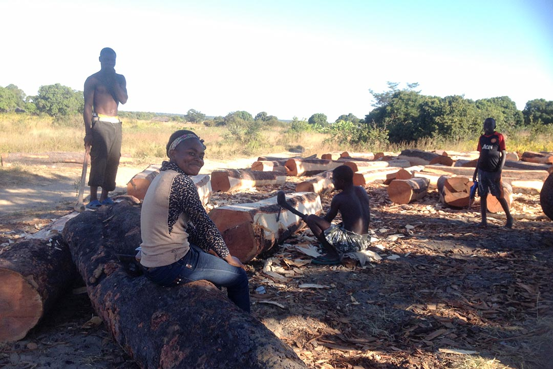與陳大叔朝夕相對的非洲伐木工和當地村民。 攝: 黃泓翔/端傳媒