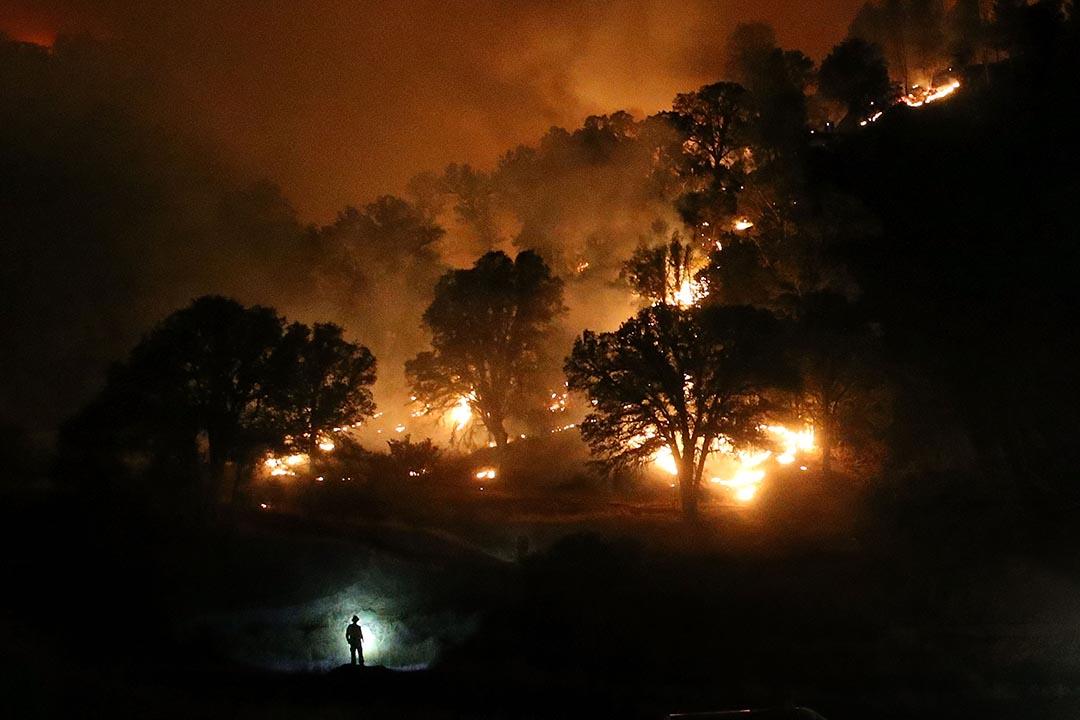 2015年8月3日,美国加州發生山火一名消防員用電筒照明道路。 攝:Justin Sullivan/Getty