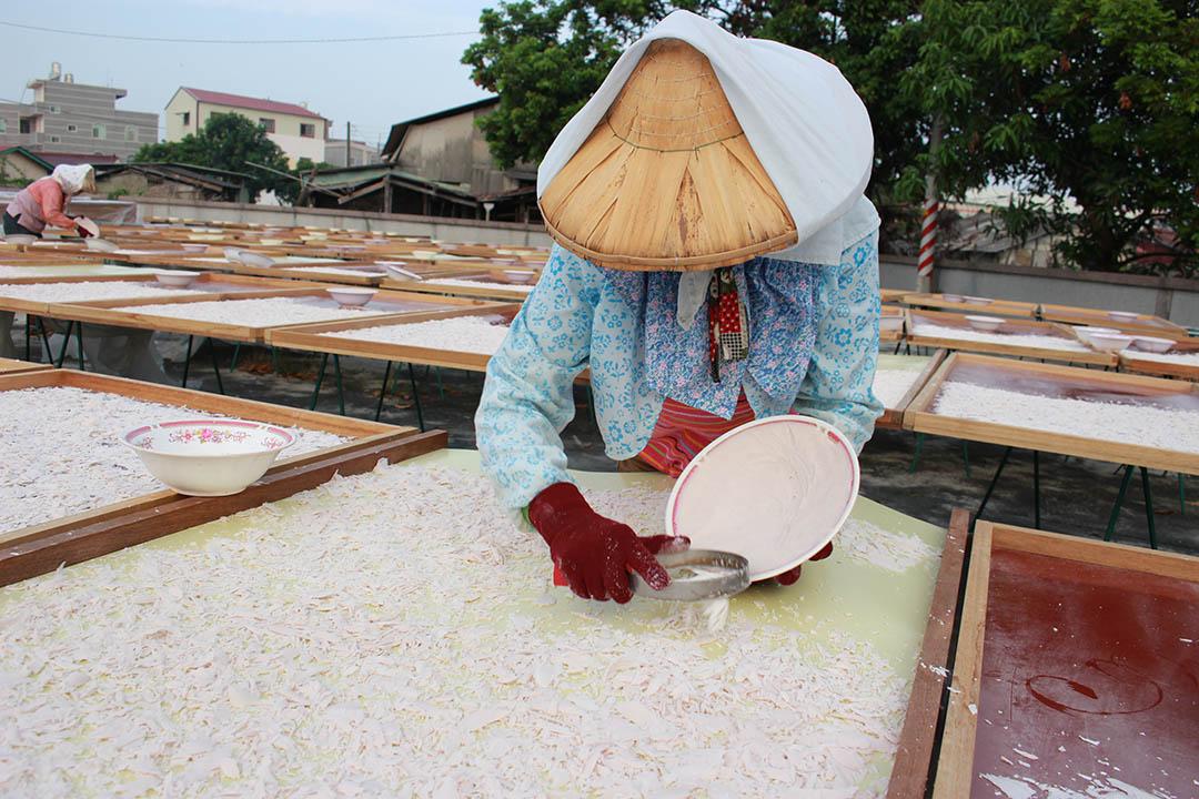 刮粉是將洗淨沉澱的粉集中到碗裡,靜置陰乾後,再將粉刮出曬乾,對於有經驗的快手,一天刮一兩百碗不是問題。照片由顧瑋提供