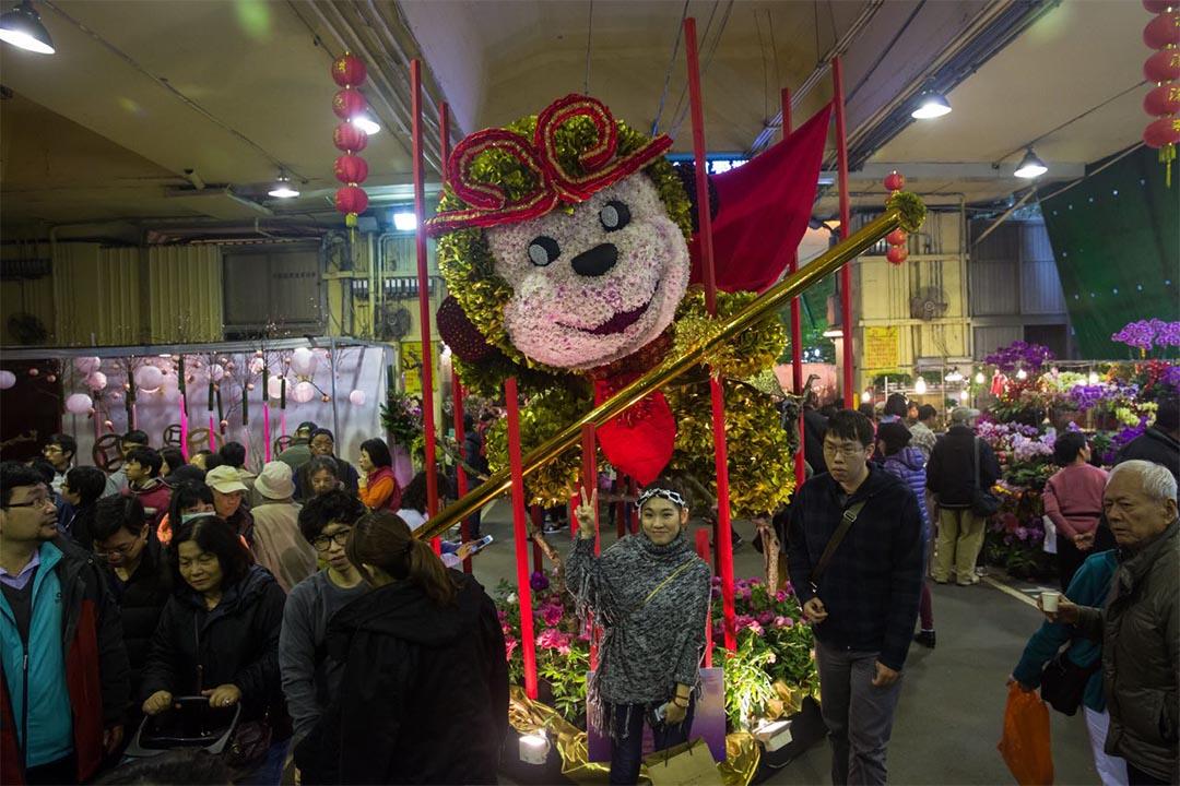 2016年1月30日,台北。攝:Billy.H.C.Kowk/端傳媒