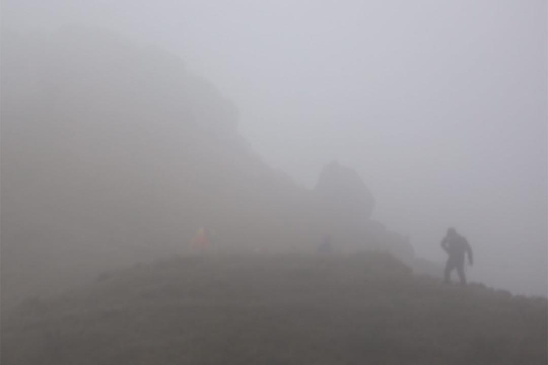 2016年1月23日,香港,大嶼山鳳凰山在寒流下被濃霧籠罩,植物結霜,路面亦有薄冰,但仍有人趁機登山賞霜。攝:盧翊銘/端傳媒