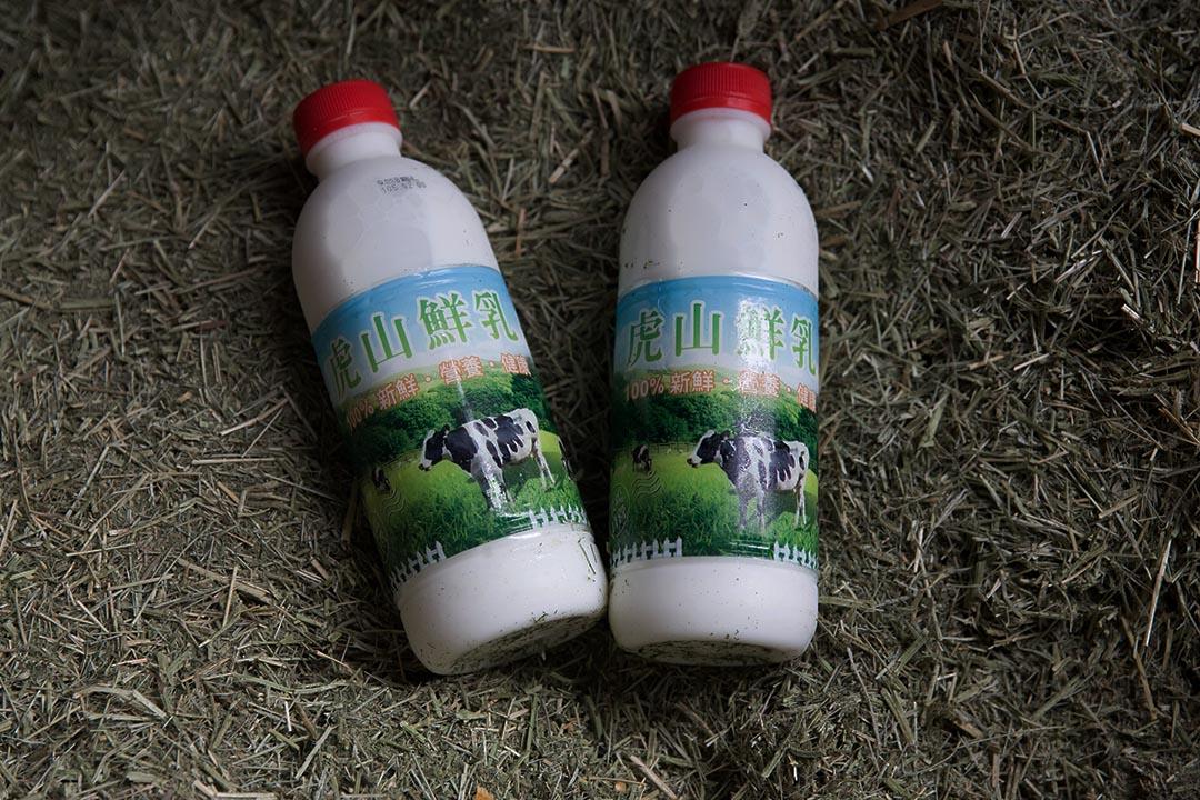 有些黃俊凱的客人直接找上門來,要求看牧場,確定有養牛才買回去喝。攝:張國耀/端傳媒