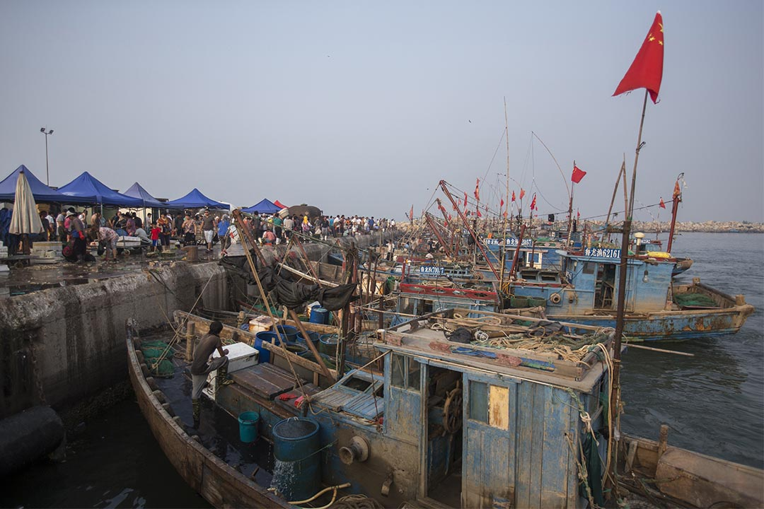下午五點的漁場,卸好的漁產拿到岸上立即出售。圖片由綠色和平中國提供