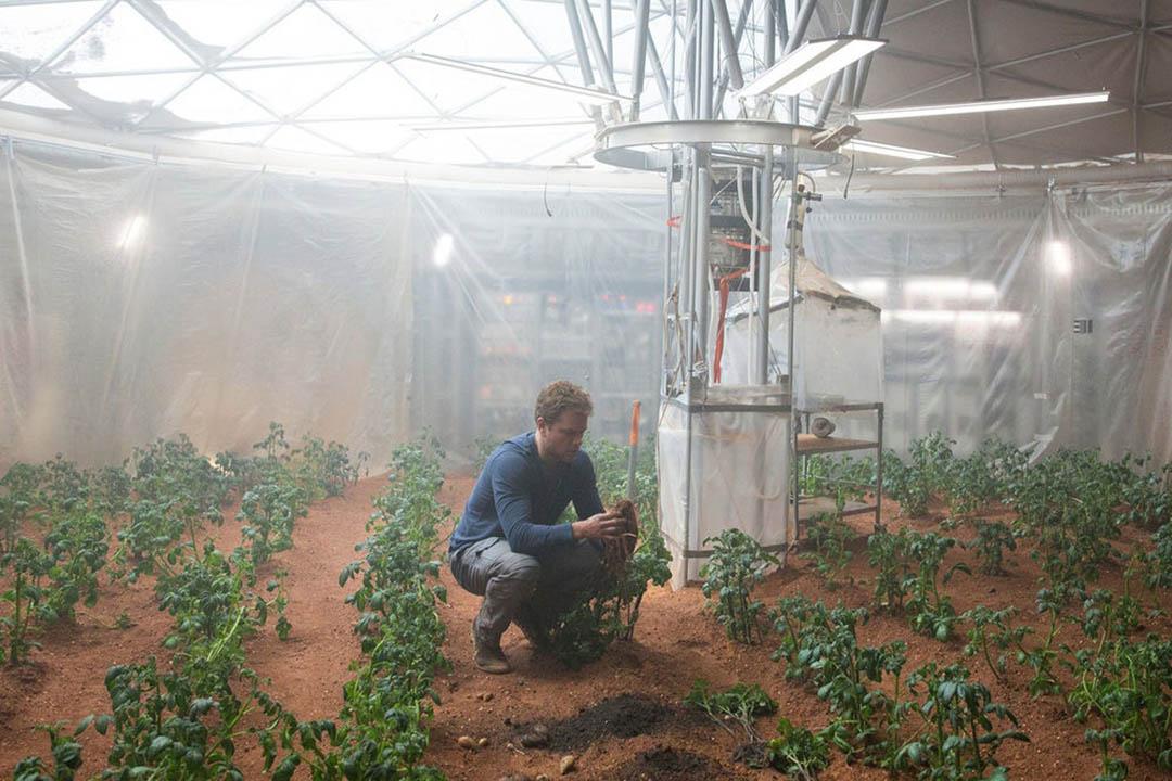 電影《火星任務》(The Martian)中,麥·迪文(Matt Damon)扮演的植物學家在火星上成功種植薯仔。