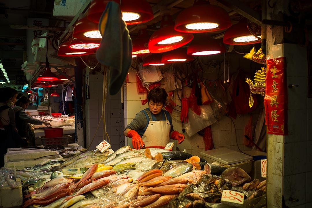 油麻地街市地下,主要是連排的鮮魚檔和菜檔。攝:Billy H.C. Kwok/端傳媒