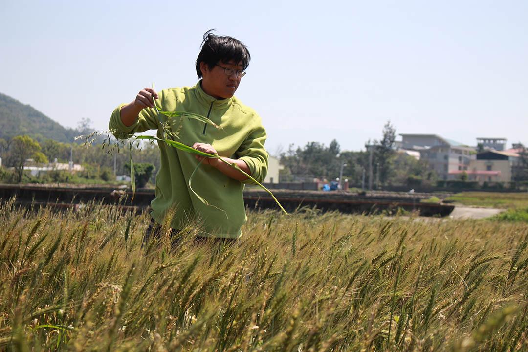 台灣小麥的創新之路因為沒有大資源,小人物們如「十八麥」的年輕創辦人馬聿安(小馬)只好自立自強,憑着創意與行動力闖關。照片由顧瑋提供。