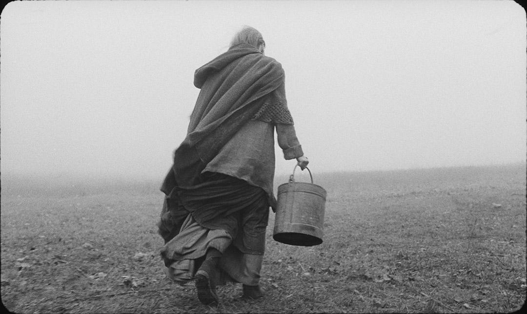 電影《都靈老馬》劇照。