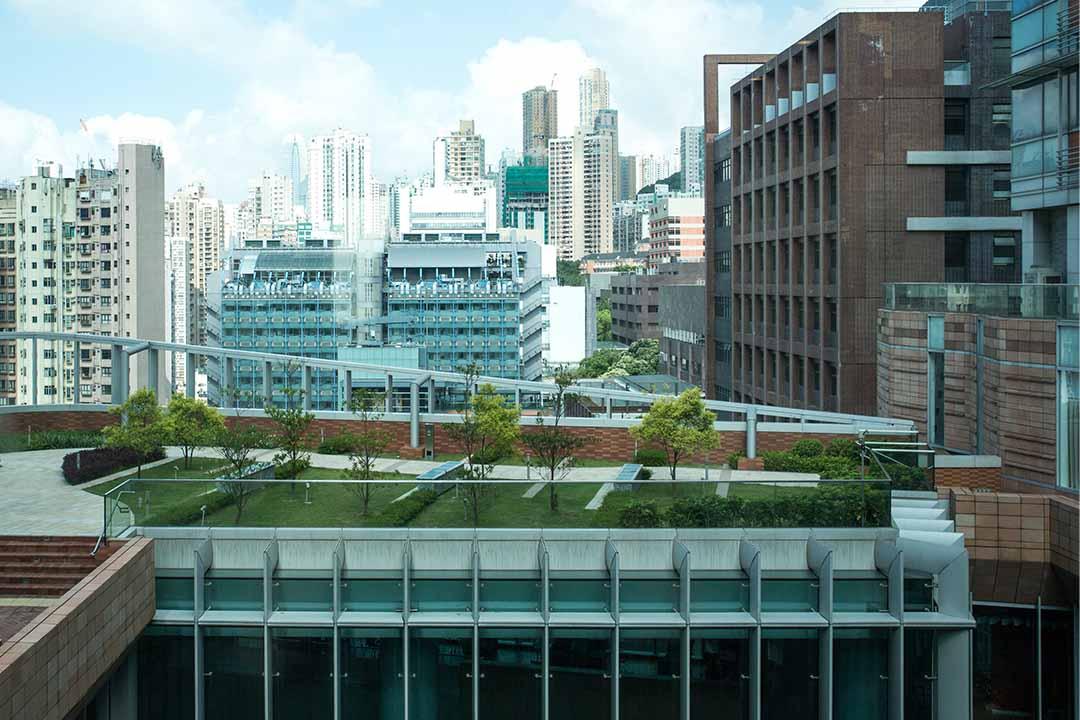 香港大學的綠化平台。