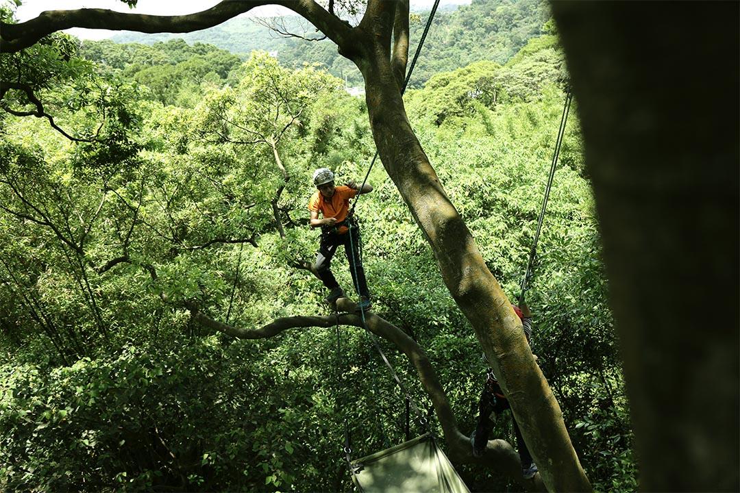 攀樹師指導學員運用各種技巧到達目的地。