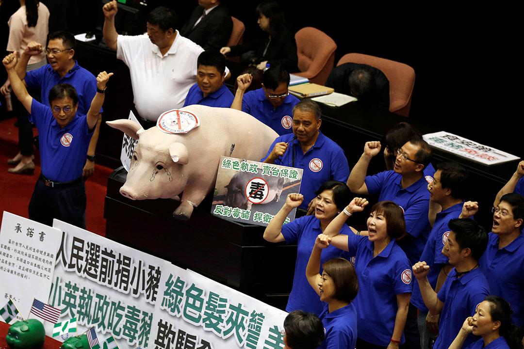 國民黨立委以豬造型的大道具向行政院長林抗議。