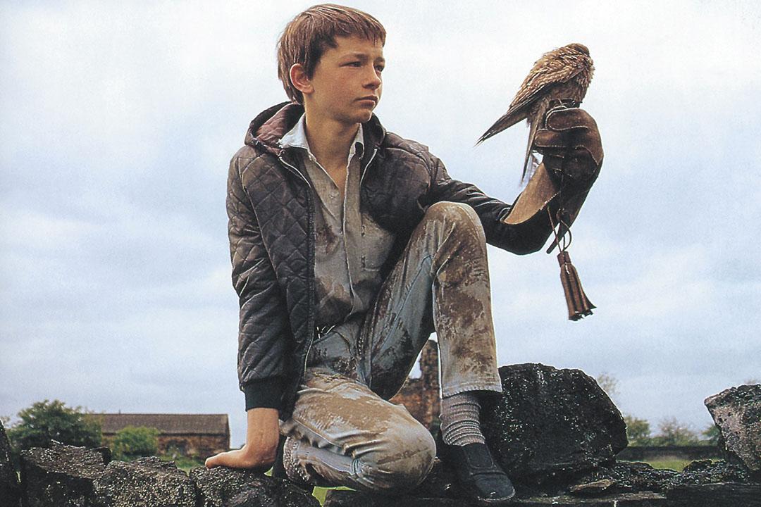 《凱斯》(Kes,台灣譯《鷹與男孩》),藉着男孩馴養飛鷹的故事,寫照勞動階層年輕一代的困境。