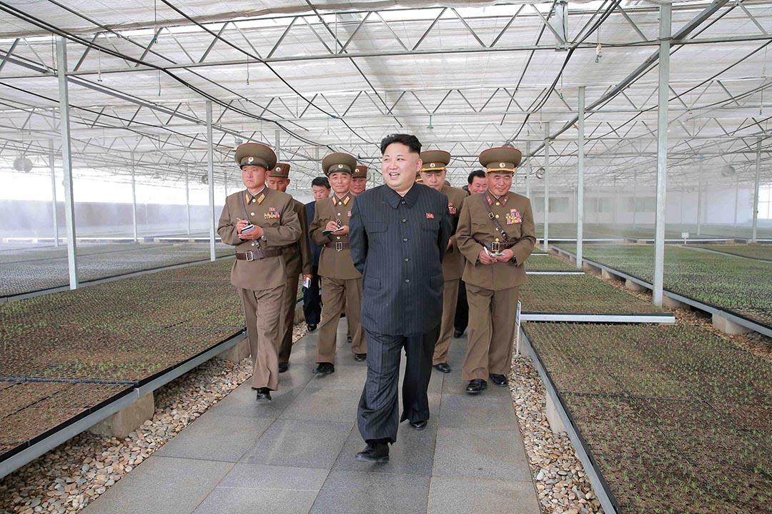 北韓官媒《今日朝鮮》讚揚美國共和黨準總統候選人特朗普是「智慧和遠見兼備的政治家」。攝 : KCNA/via Reuters