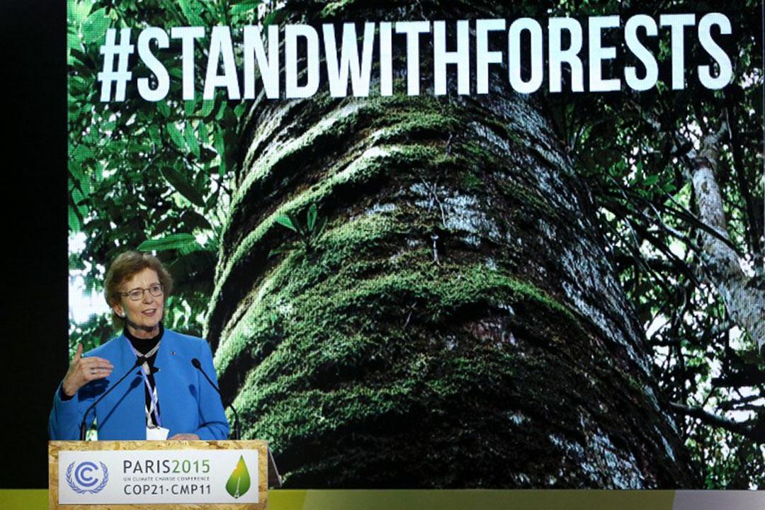 聯合國厄爾尼諾現象和氣候變化問題特使愛爾蘭前總統瑪麗·羅賓遜(Mary Robinson )。