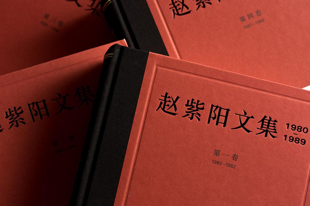 《趙紫陽文集》。
