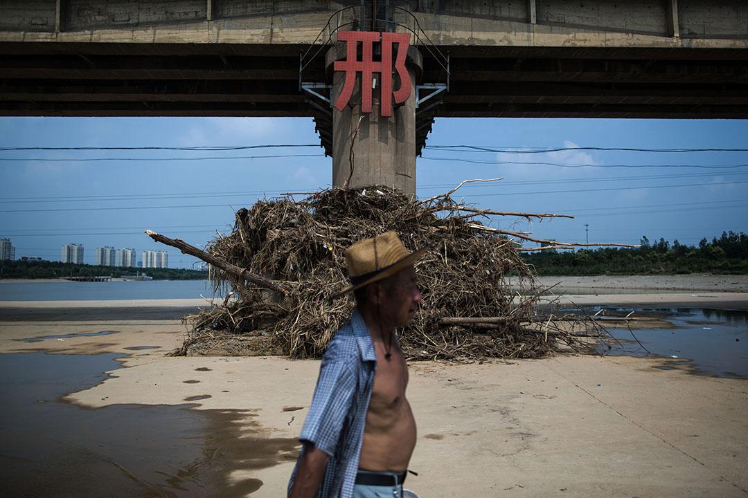 邢台市七里河,垃圾之沖到大橋橋墩上。