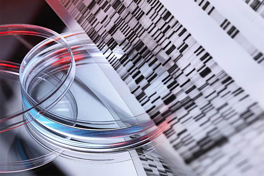 中國科學家將進行全球首宗人體基因編輯臨床試驗。