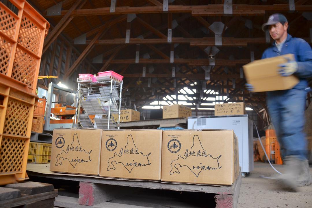 村上農場的當家村上知之正在儲藏庫為了出貨忙進忙出。