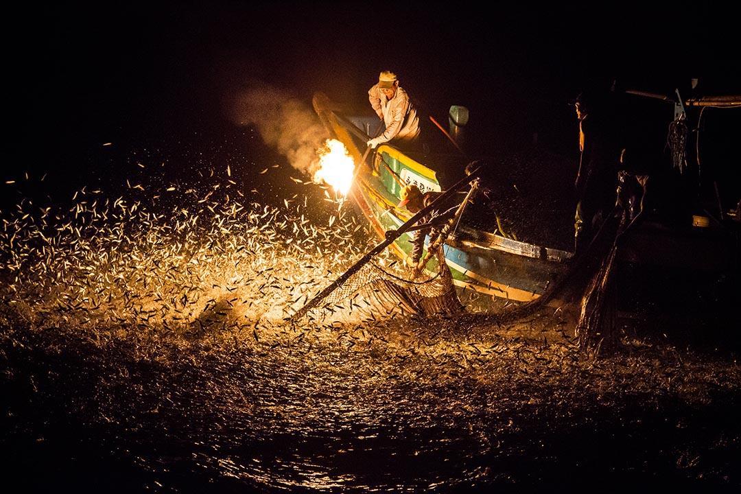 金山區獨具特色的傳統捕魚方式「蹦火仔」對環境的干擾較低,屬於較友善的捕漁方法,也展現環境保護和永續漁業理念。